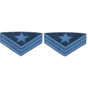 US Chevrons, Ordinance Sargent